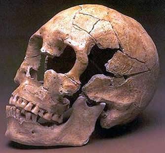 Comenzar el año con buenos dientes. ¿Por qué el hombre prehistórico tenía mejores dientes quenosotros?